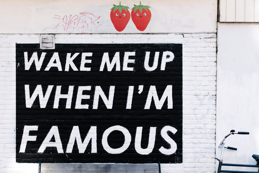 sign wake me when i am famous